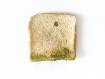 Прессформа на изолированном хлебе стоковые фото
