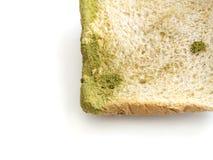 Прессформа на изолированном хлебе стоковое изображение
