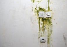Прессформа на стене с переключателями и штепсельной вилкой Стоковая Фотография