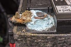Прессформа на столбе автомобильного аккумулятора стоковые изображения