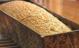 Прессформа домодельного хлеба Стоковые Фотографии RF