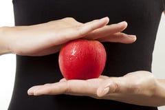 прессформа яблока Стоковые Изображения RF
