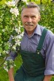 Предварительное человека в саде лет весной стоковое изображение
