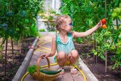 Прелестная маленькая девочка жать в парнике Стоковые Фото