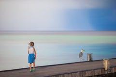 Прелестная счастливая маленькая девочка с серой цаплей дальше стоковое фото