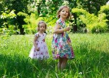 Прелестные маленькие девочки (сестры) в саде лета Стоковое Изображение RF
