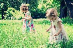 Прелестные маленькие девочки (сестры) в саде лета Стоковая Фотография RF