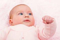 прелестный младенец Стоковые Изображения