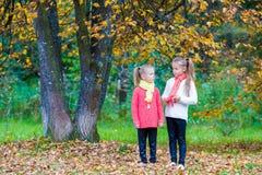 2 прелестных девушки в парке на теплой солнечной осени Стоковое Фото