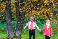 2 прелестных девушки в парке на теплой солнечной осени Стоковые Фото