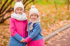 2 прелестных девушки в парке на теплом солнечном дне осени Стоковое Изображение