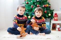 2 прелестных дети, брать мальчика, есть печенья и выпивать Стоковое фото RF