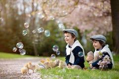 2 прелестных дети дошкольного возраста, братья мальчика, играя с litt Стоковые Изображения RF