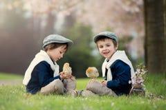 2 прелестных дети дошкольного возраста, братья мальчика, играя с litt Стоковое Фото