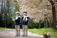 2 прелестных дети дошкольного возраста, братья мальчика, играя с litt Стоковые Изображения