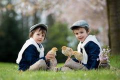 2 прелестных дети дошкольного возраста, братья мальчика, играя с litt Стоковое Изображение RF