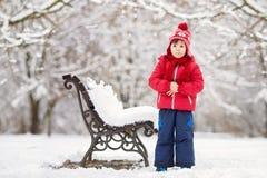 2 прелестных дет, братья мальчика, играя в снежном парке, ho Стоковые Изображения