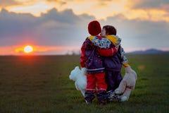 2 прелестных дет, братья мальчика, наблюдая красивое великолепное Стоковое Фото