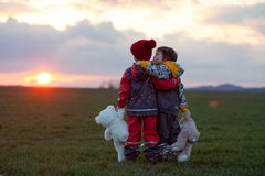 2 прелестных дет, братья мальчика, наблюдая красивое великолепное Стоковая Фотография RF