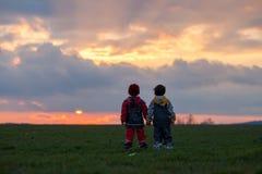 2 прелестных дет, братья мальчика, наблюдая красивое великолепное Стоковое фото RF
