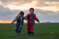 2 прелестных дет, братья мальчика, наблюдая красивое великолепное Стоковые Изображения RF