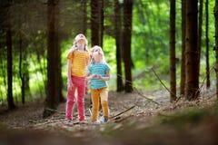 2 прелестных маленьких сестры в лесе на лете Стоковая Фотография RF