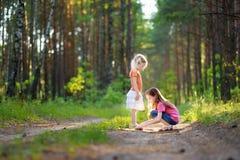 2 прелестных маленьких сестры в лесе на лете Стоковое фото RF
