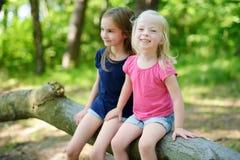 2 прелестных маленьких сестры в лесе Стоковые Фото