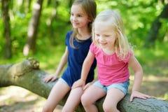 2 прелестных маленьких сестры в лесе Стоковое фото RF