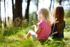 2 прелестных маленьких сестры в лесе Стоковые Изображения RF
