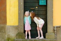 2 прелестных маленьких сестры имея потеху совместно на теплый и солнечный летний день Стоковая Фотография