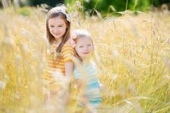 2 прелестных маленьких сестры идя счастливо в пшеничное поле Стоковая Фотография RF