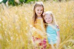 2 прелестных маленьких сестры идя счастливо в пшеничное поле Стоковые Фото