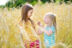2 прелестных маленьких сестры идя счастливо в пшеничное поле Стоковые Изображения