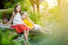 2 прелестных маленьких сестры смеясь над и обнимая на летний день в парке Стоковое фото RF