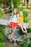 2 прелестных маленьких сестры смеясь над и обнимая на летний день в парке Стоковая Фотография