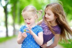 2 прелестных маленьких сестры смеясь над и обнимая одином другого Стоковые Фотографии RF