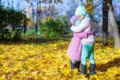 2 прелестных маленькой девочки наслаждаясь осенью солнечной Стоковые Изображения