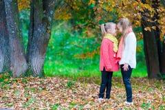 2 прелестных маленькой девочки наслаждаясь осенью солнечной Стоковая Фотография