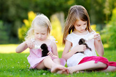 2 прелестных маленькой девочки подавая малые котята с молоком котенка от бутылки Стоковое Изображение