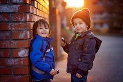 2 прелестных мальчика, рядом с кирпичной стеной Стоковые Изображения