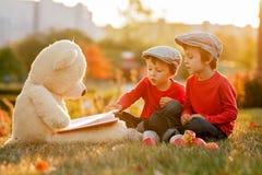 2 прелестных мальчика с его другом плюшевого медвежонка в парке Стоковые Изображения RF