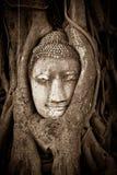 Предел Ayutthaya Таиланда Джулиана Стоковые Изображения