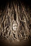 Предел Ayutthaya Таиланда Джулиана Стоковое Изображение