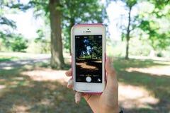 Предназначенная для подростков девушка принимает smartphone пользы изображения Стоковые Изображения