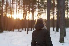 Предназначенная для подростков прогулка девушки в сосновом лесе зимы в заходе солнца от позади Стоковые Фотографии RF
