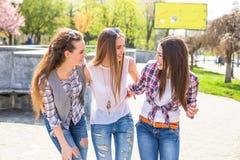 Предназначенные для подростков девушки наслаждаются приятельством Молодые счастливые подростки имея потеху в парке лета Стоковое фото RF