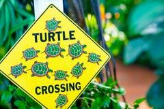Предостерегите предупредительный знак в национальном парке болотистых низменностей Флориды, США Стоковое Изображение