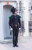 предохранитель королевский Стоковые Фото