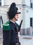 предохранитель королевский Стоковое Фото